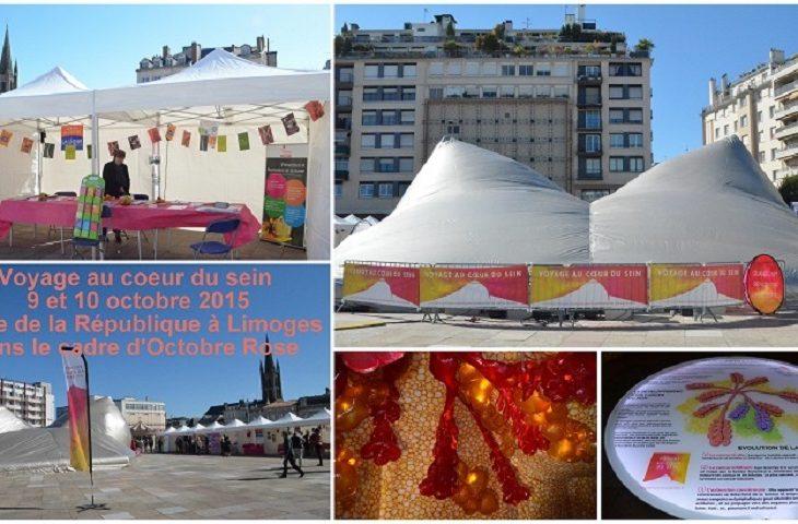 Voyage-au-coeur-du-sein.-Limoges-9.10-oct.-2015